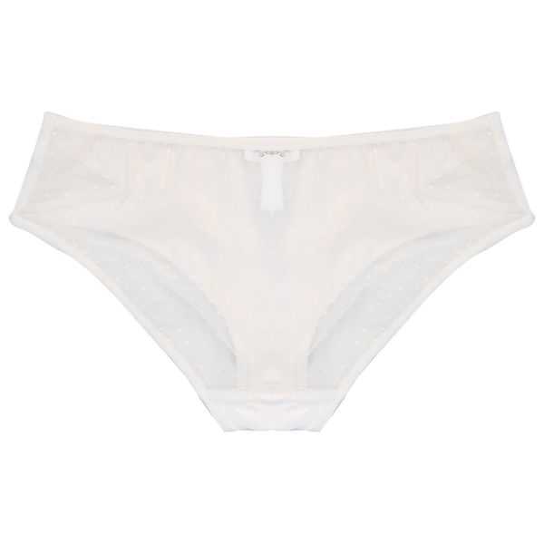 Perrie Briefs | Silver Lining Lingerie