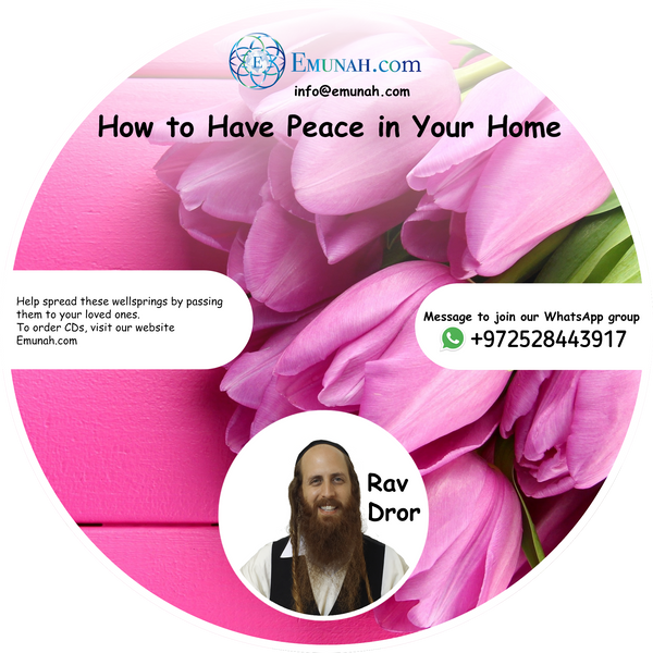How to Have Peace in Your House