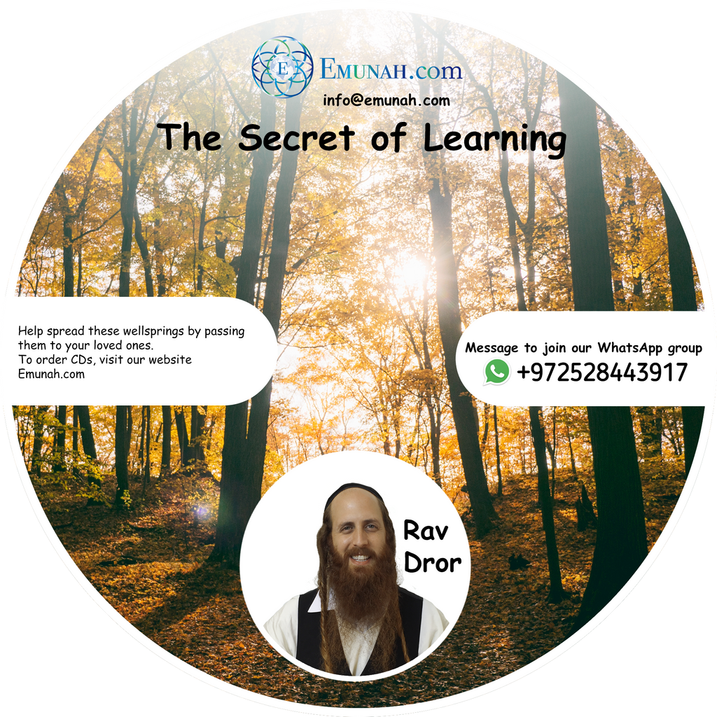 The Secret of Learning