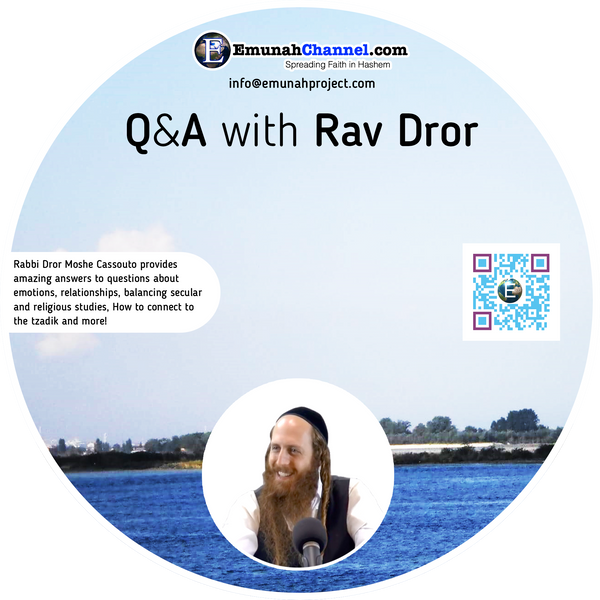 Q&A with Rav Dror (MP3 Download)