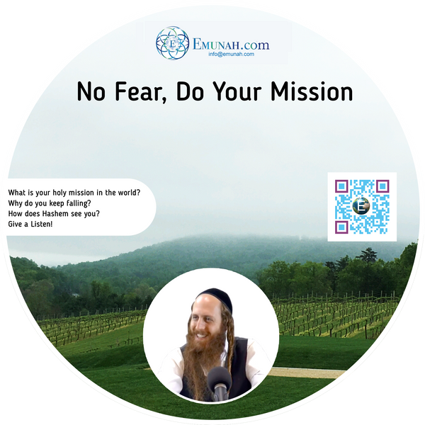 No fear, Do your Mission (MP3 Download)