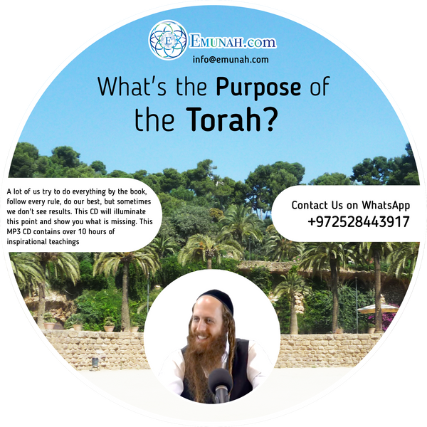 What's the Purpose of the Torah