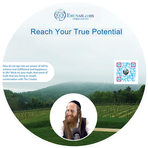 Reach Your True Potential (MP3 Download)