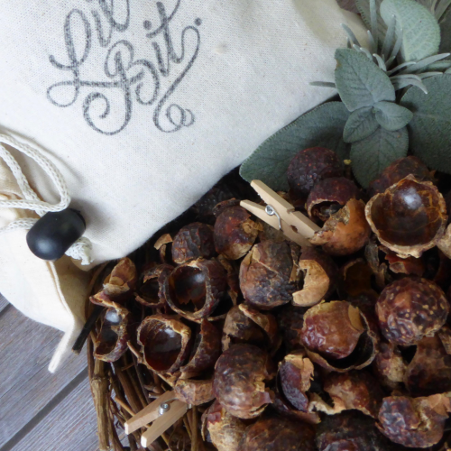 Organic soap berries - Lil' Soap Nuts