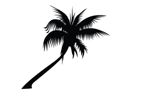 Palm tree silhouette vector