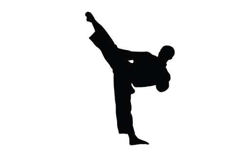 Martial arts silhouette vector
