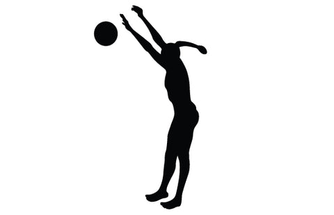 Womens beach volleyball silhouette vector
