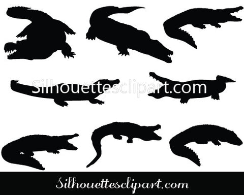 Alligator Vector Graphics
