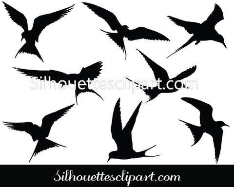 Arctic Tern Silhouette Vector Graphics