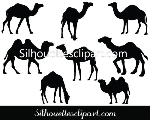 Camel Silhouette Vector Pack