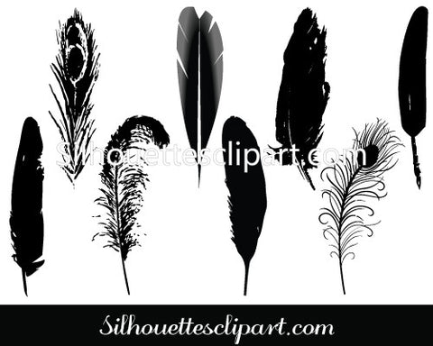 Feather Vector Clip Art Pack