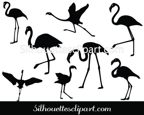 Flamingo Silhouette Vector Graphics Pack