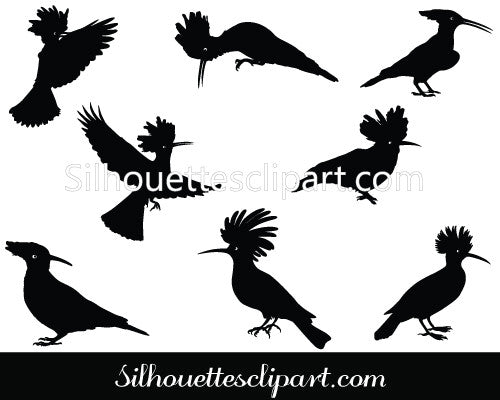 Hoopoe Vector Graphics