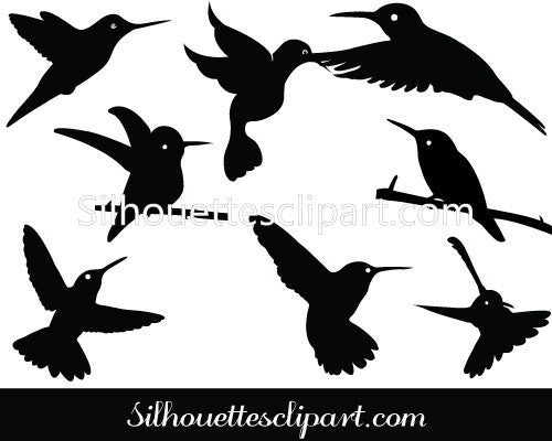 Hummingbird Silhouette Vector Graphics