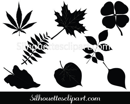 Show Leaf Silhouette Vector Graphics