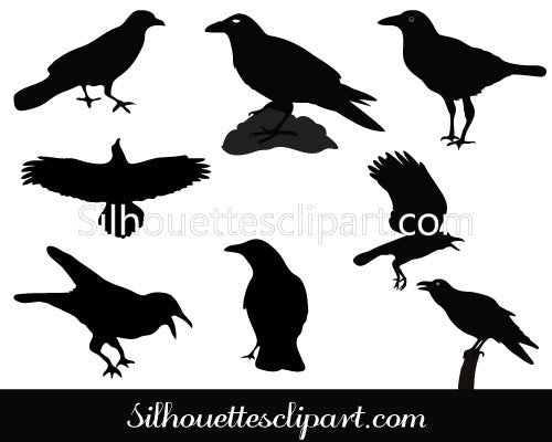 Raven Silhouette Vector Pack