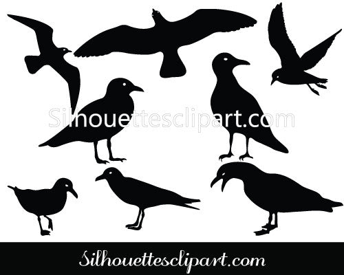 Seagull Silhouette Vector Graphics Pack