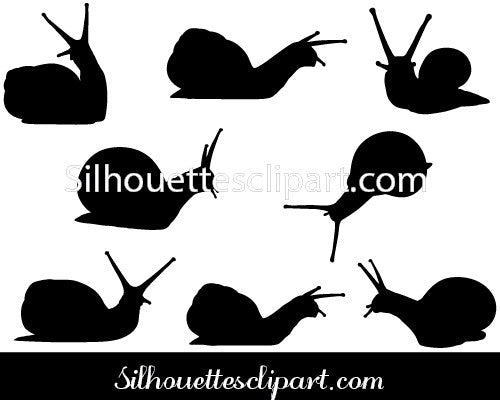 Snail Vector Graphics