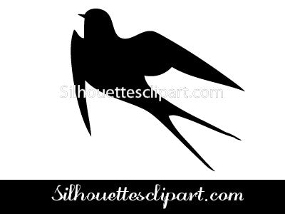 Swallow Vector Graphics