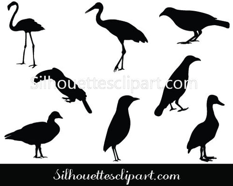 Birds Silhouette Vector Graphics