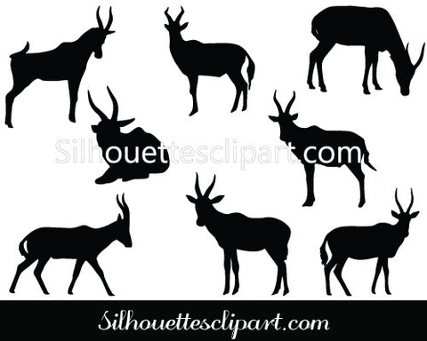 Blesbok Vector Graphics
