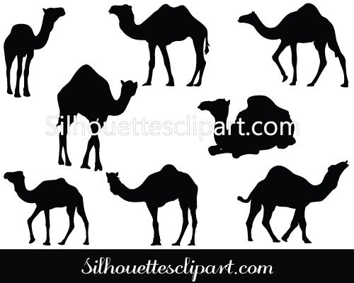 Camel Silhouette Graphics