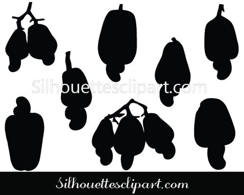 Cashew Nut Fruits Vector Graphics