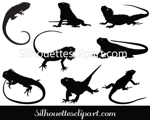 Iguana Vector Graphics