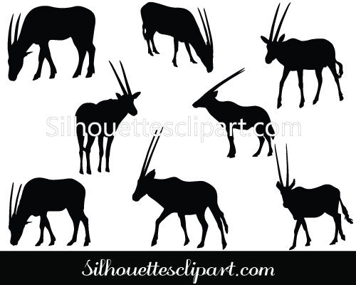 Oryx Vector Graphics
