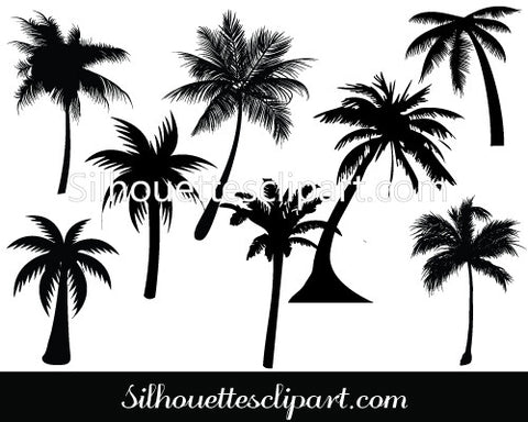 Palm Tree Silhouette Vector Graphics