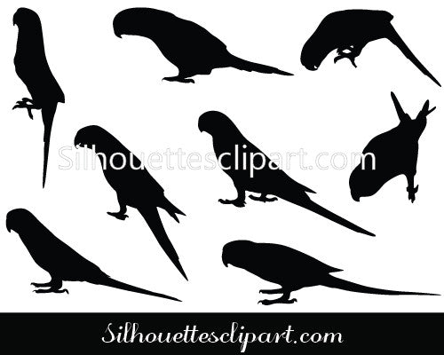 Parrot Silhouette Vector