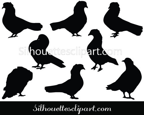 Pigeon Silhouette Vector Clipart