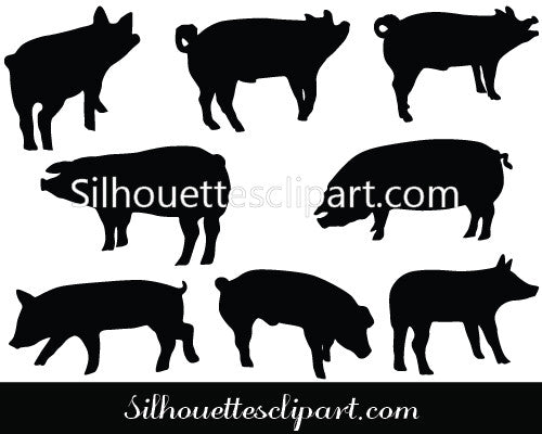 Pigs Vector Graphics
