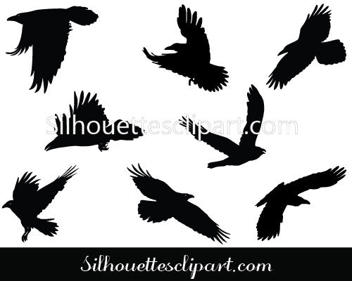 Raven Flying Silhouette Vector