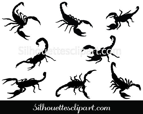 Scorpion Vector Graphics