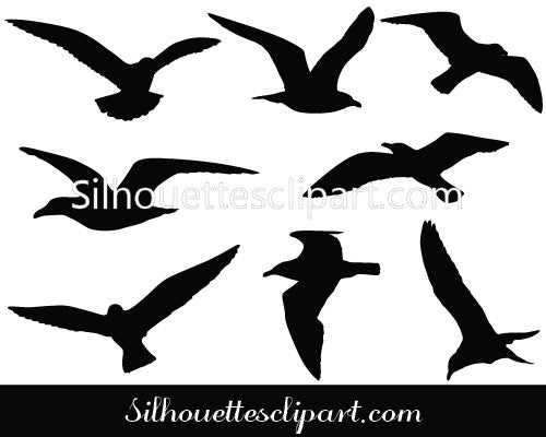 Seagulls Flying Vector Graphics