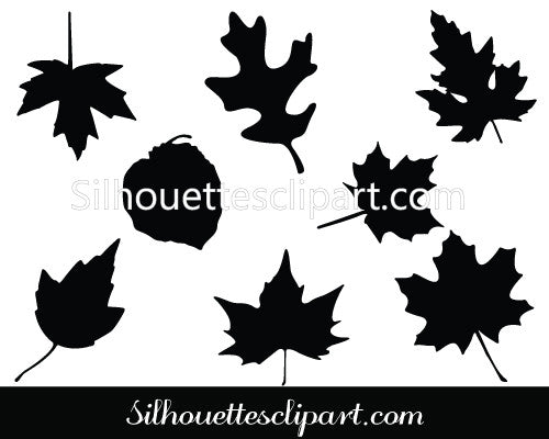 Thanksgiving Leaf Vector