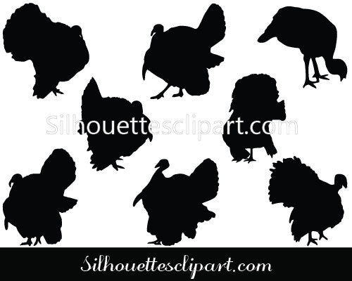 Turkey Vector Graphics