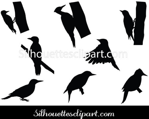 Woodpecker Silhouette Vector