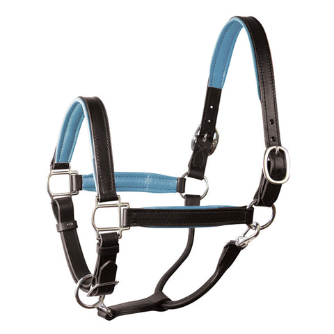 Padded Leather Halter by Perri's Leather
