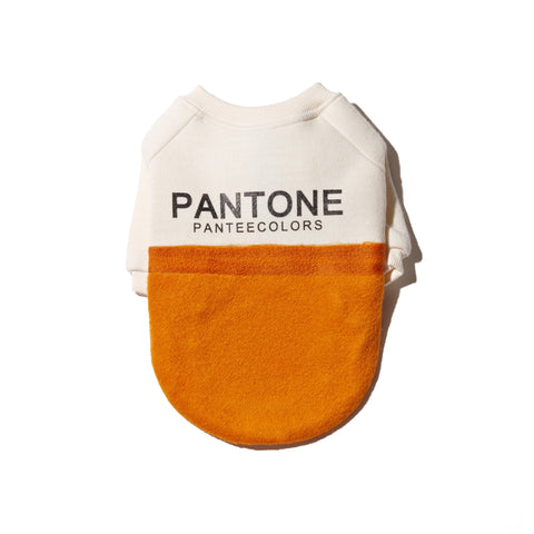 boston terrier, cashmere, dog coat, dog sweater, handmade, dog shirt, dog winter, warm clothing, for dog, dog clothing, pet clothes, wool, made in korea, dog handmade, clothing for dog, shirt for dog, orange, pantone