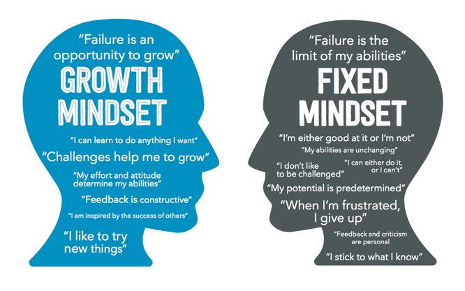 Grow your Mindset
