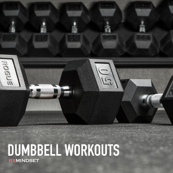 100+ dumbbell workouts