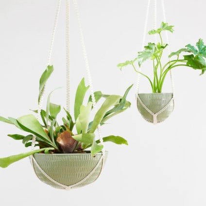 Angus & Celeste Macrame Hanging Planter Green Small