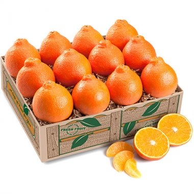 First and Last Honeybells