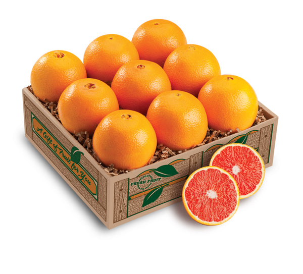 Scarlet Red Navel Taster - Florida Orange World