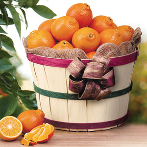 Florida Honeybell Grove Basket - Orange World