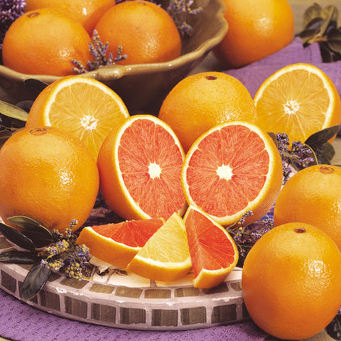 Cara Cara Red Navel Oranges & Navel Oranges - Florida Orange World