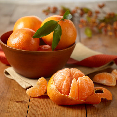 Florida Honey-Sweet Tangerines - Orange World