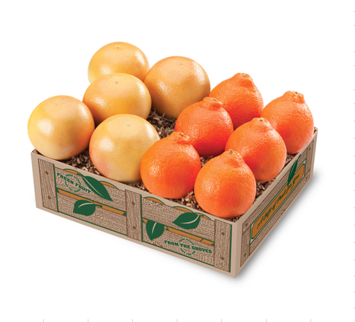 Honeybells Tangelos and Red Grapefruit - Florida Orange World